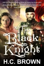 The Black Knight by H.C. Brown