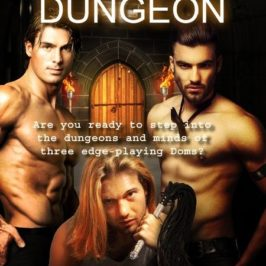 New Release: One Night in a Dungeon: Anthology