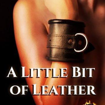 New Release: A Little Bit of Leather by Jason Walker
